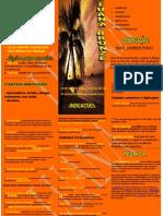 Brochura de Bronzeamento a Jato