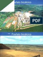Fosfato bicálcico 1