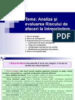 Tema6 RISC Afaceri Modificat