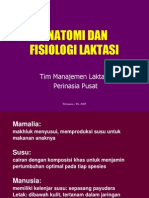 anatomi fisiologi laktasi