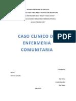 Proyecto de Enfermeria Comunitaria