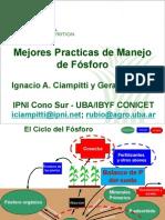 FOSFORO 2009.pdf