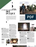16 Pulque