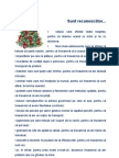 Recunoscator_christmas.doc