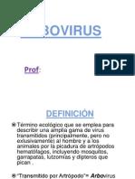 CARACTERÍSTICAS ARBOVIRALES