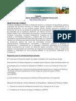 Fondas - Objetivos y Requisitos de Financiamiento