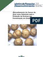 EMBRAPA - Aproveitamento Caroço Açaí BPD30_2009