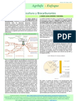 Agrinfo_E4_biocarburantes