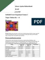 Teori Organisasi Umum 2 - 6