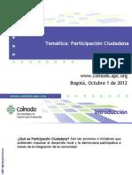 08-participacion-ciudadana