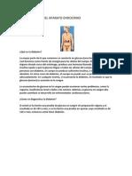 Enfermedades Del Aparato Endocrino