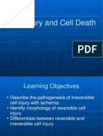 Cell Injury 2