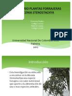 SEMINARIO PLANTAS FORRAJERAS (2)