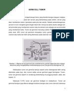 Tumor Sel Germinal 2