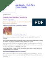 Alimentos para aumentar a Testosterona - Medicina & Saúde