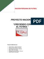 resumen_proyecto