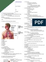 Respiratory Whole Doc