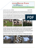 Shannon Brook Farm Newsletter 6-15-2013