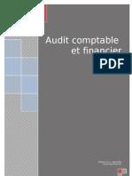 122317151 Audit Et Revision Des Comptes