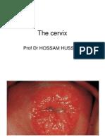Cervix Color Plates