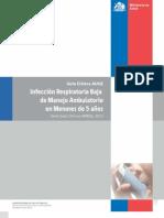 GUIAS MINSAL IRA 2013.pdf