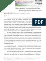 IMPACTO AMBIENTAL DA EMISSÃO DE GASES PELA PECUÁRIA
