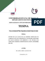 Tesina Alexis Corregida Marzo