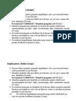 Reguli pentru BalintGroup.doc