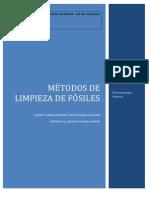 Metodos de Limpieza de Fosiles