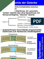 Vorlesung_AnatomieI_Gelenke