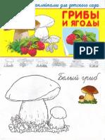 Грибы и ягоды. Раскраска с наклейками для детского сада (Суперраскраска) - 2010