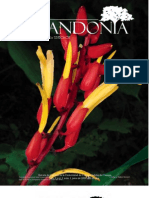 Carbonell en Lacandonia