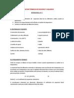 Dilatacion Termica de Solidos y Liquidos