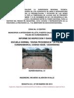 Informe de Inspeccion y Diagnostico Normal Dp La Palma