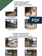 Ecocidio San Pedro