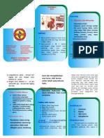Leaflet Gastristis