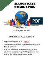ECONOMICS Exchange Rate Determination