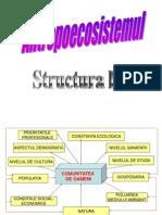 Structura Unui Antropoecosistem