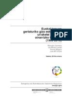 Euskal kasuan gertaturiko giza eskubideen urraketei buruzko oinarrizko txostena (1960-2013)
