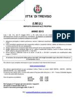 Imu Treviso 2013