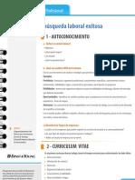 PDF Claves Para Una Busqueda Laboral Exitosa 5