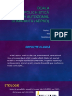 Boala polichistică renală autozomal dominantă (ADPKD)