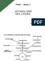 metabolisme_lipides