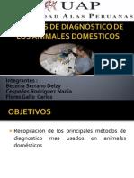 Tecnicas de Diagnostico de Los Animales Domesticos