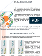 replicacindeldna-100525233140-phpapp02