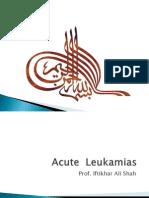 Acute Leukamias Final Yr 2010