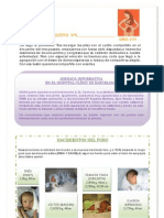 Boletin informativo6