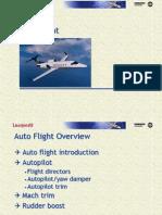 L45 M 22 Auto FlightFam