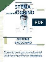 sistemaendocrino-20081111-1226443561472865-8