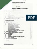 Perfil Proyecto Minero Cerro Tamasamil